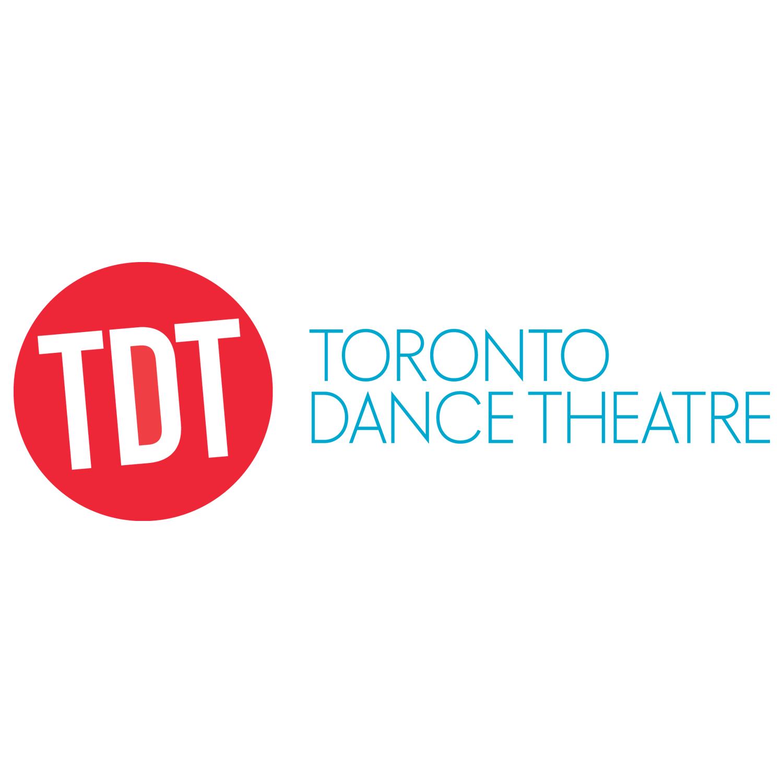 TDT client logo
